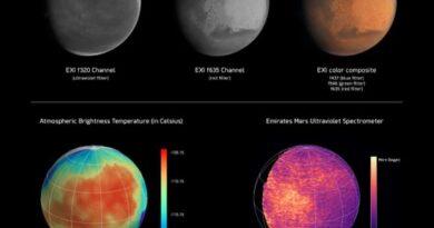 video:-one-year-on-–-hope-probe-brings-uae's-space-journey-beyond-mars